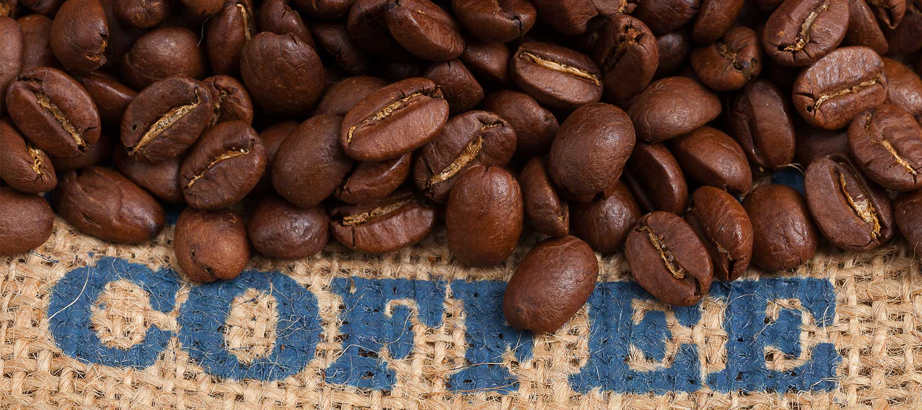 What is Blue Mountain Coffee?