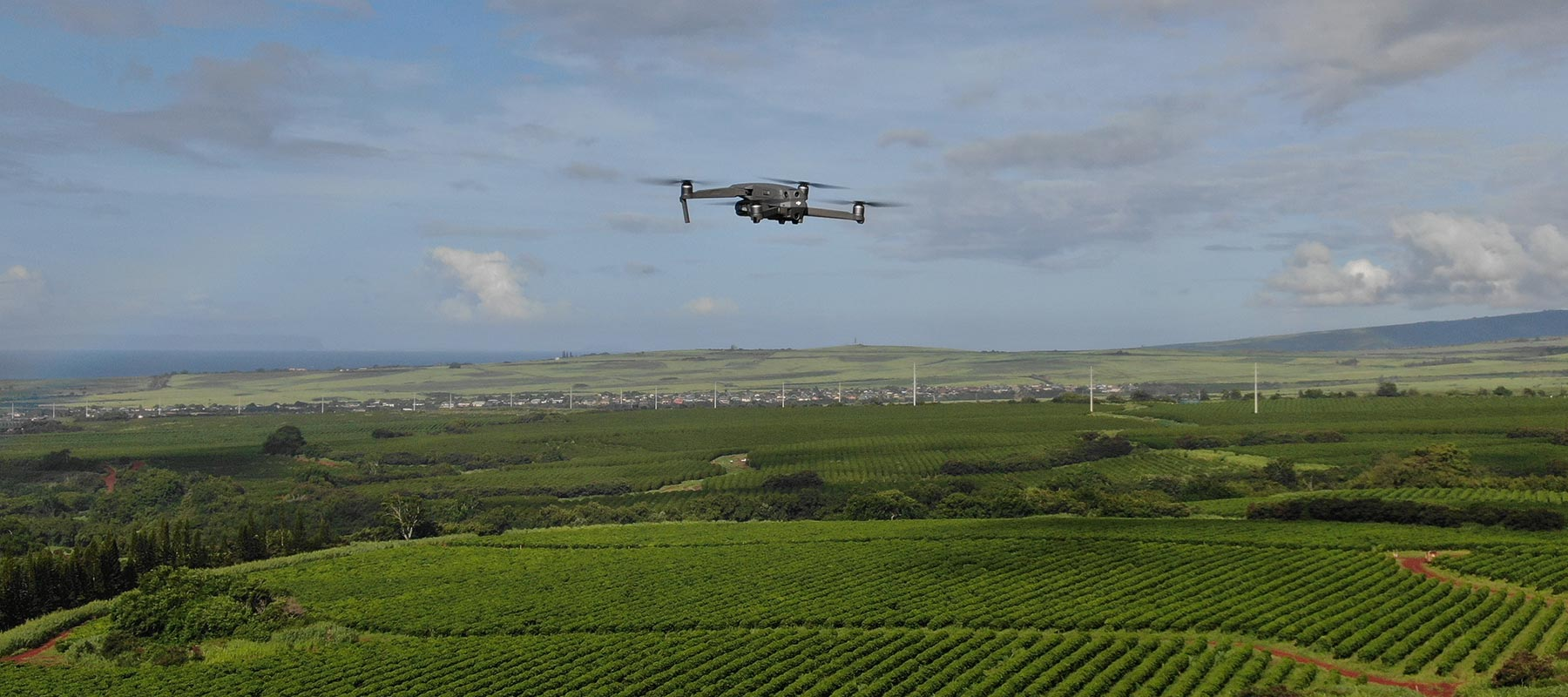 Drone Worry, Beans Happy: How Drone Technology Helps Kauai Coffee Grow a Better Bean