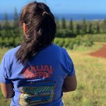 kauai coffee farm tour