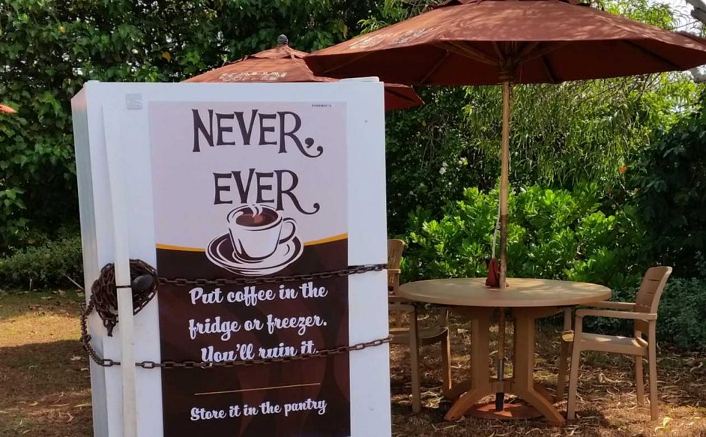 Refrigerator at Kauai Coffee with a sign that says never, ever put coffee in the fridge or freezer, You'll ruin it. Store it in the pantry. The refrigerator is sitting outside next to a few cafe tables and is wrapped in a heavy chain.