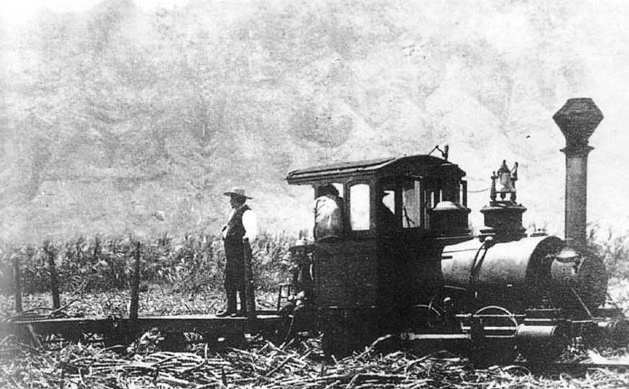 Koloa Sugar Company Plantation cane train, Hawaii, 1882
