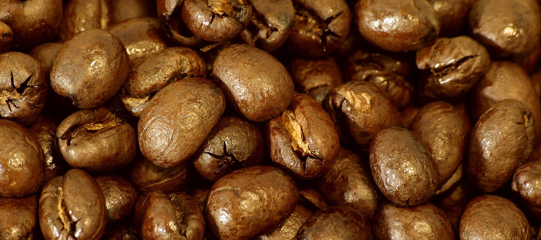 close up of roasted peaberry coffee