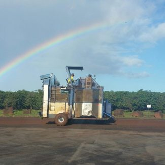 rainbow over kauai coffee fields and harvester